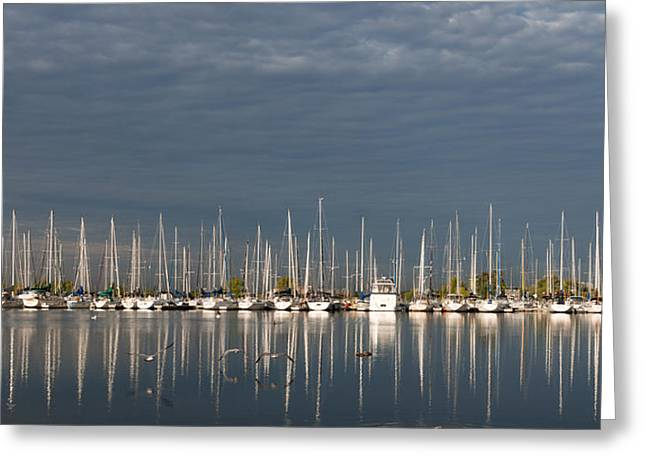 Sailboats In Water Greeting Cards - A Break in the Clouds - White Yachts Gray Sky Greeting Card by Georgia Mizuleva