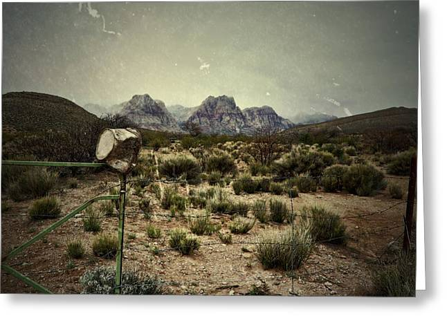 A Bucket And A Fence Greeting Card by Mark Ross