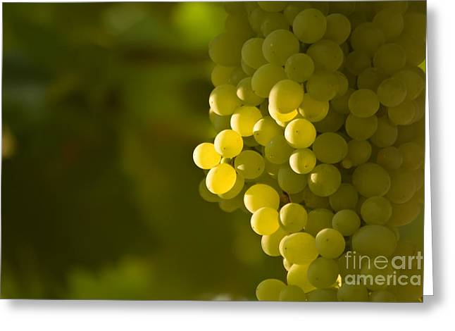 Fod Greeting Cards - A Bunch Of Green Grapes Greeting Card by Leyla Ismet