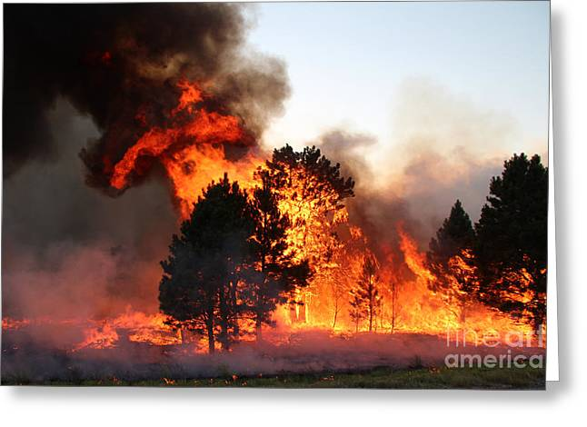 Greeting Card featuring the photograph A Burst Of Flames From The White Draw Fire by Bill Gabbert