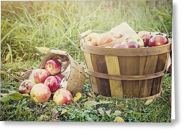 Bushel Basket Greeting Cards - A Bushel and a Peck Greeting Card by Heather Applegate