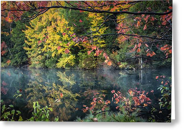New Hampshire Leaves Greeting Cards - A cacophony of colour Greeting Card by Chris Fletcher