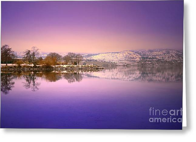 Snow Capped Greeting Cards - A Calm Winter Morning Greeting Card by Tara Turner