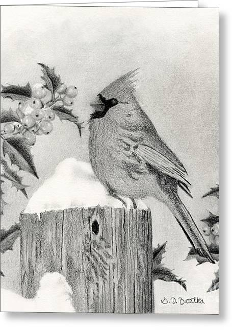 Christmas Art Greeting Cards - A Cardinal And Holly Greeting Card by Sarah Batalka
