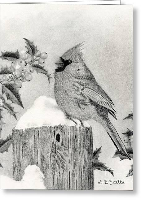 A Cardinal And Holly Greeting Card by Sarah Batalka
