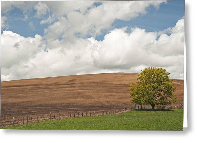 Contour Plowing Greeting Cards - A Casual Summer Greeting Card by Latah Trail Foundation