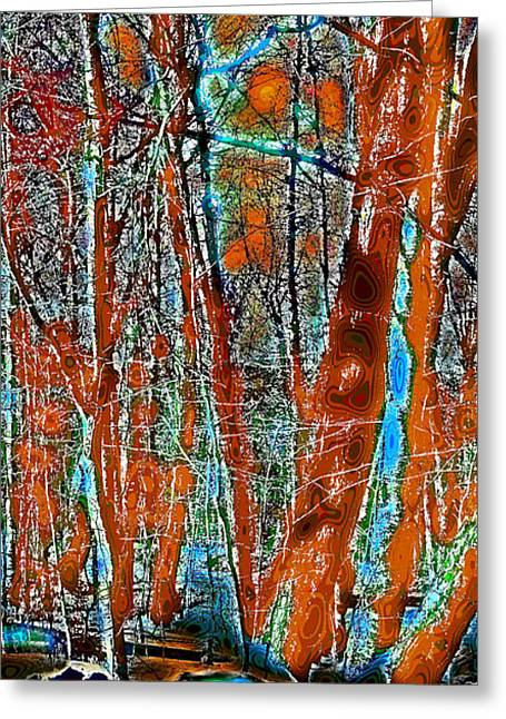 A Change In The Seasons Vi Greeting Card by David Patterson