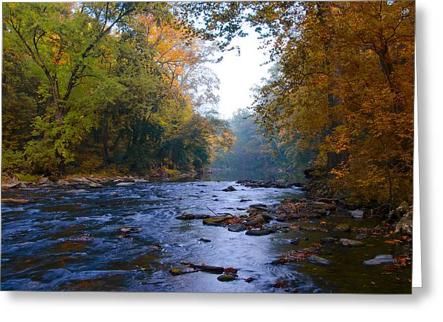 Change Of Seasons Greeting Cards - A Change of Season along the Wissahickon Creek Greeting Card by Bill Cannon