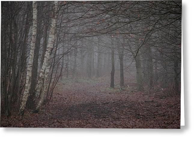 Haze Greeting Cards - A Chill In The Trees Greeting Card by Odd Jeppesen