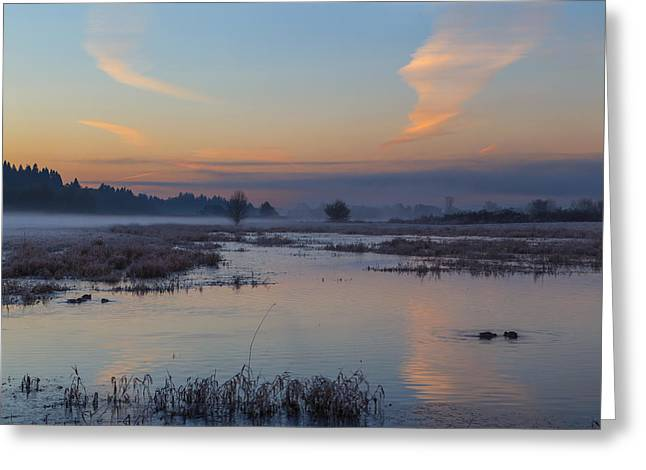 Wildlife Refuge. Greeting Cards - A Chilly Sunrise Greeting Card by Angie Vogel