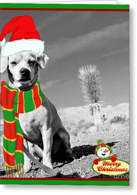 Pound Puppies Greeting Cards - A CHRiSTMAS PRiNCeSS Greeting Card by Angela J Wright