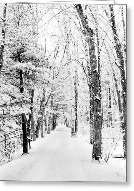 Snow Path Greeting Cards - A Clean Slate Greeting Card by Greg Fortier