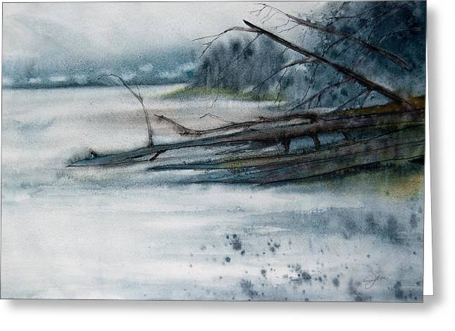 A Cold And Foggy View Greeting Card by Jani Freimann