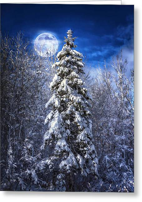 Snowy Night Greeting Cards - A Cold Night in Northern Maine Greeting Card by Gary Smith