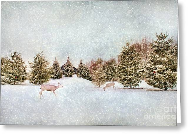 Wildlife Celebration Greeting Cards - A Cold Winters Day Greeting Card by Darren Fisher