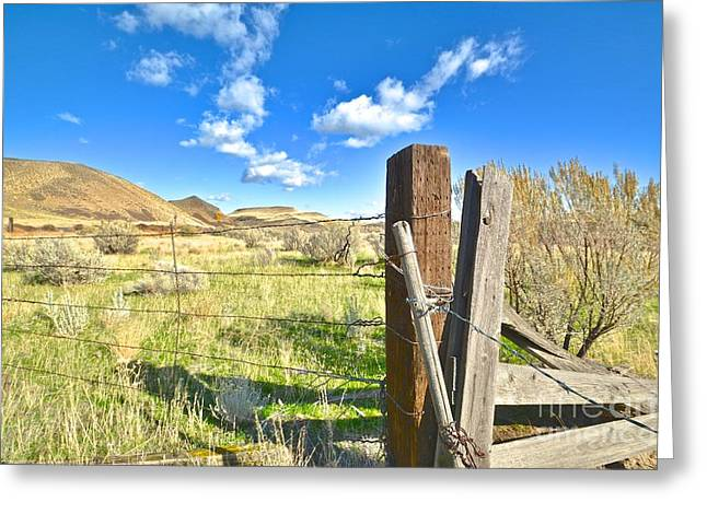 Franklin Farm Greeting Cards - A Country Desert Scene Greeting Card by Rachel Cash