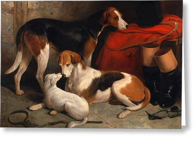 Foxhound Greeting Cards - A Couple of Foxhounds with a Terrier the property of Lord Henry Bentinck Greeting Card by William Barraud