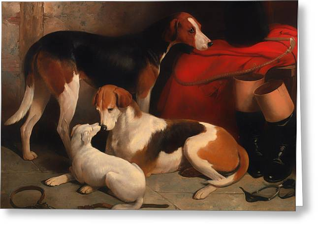 Foxhound Greeting Cards - A Couple of Foxhounds with a Terrier Greeting Card by William Barraud