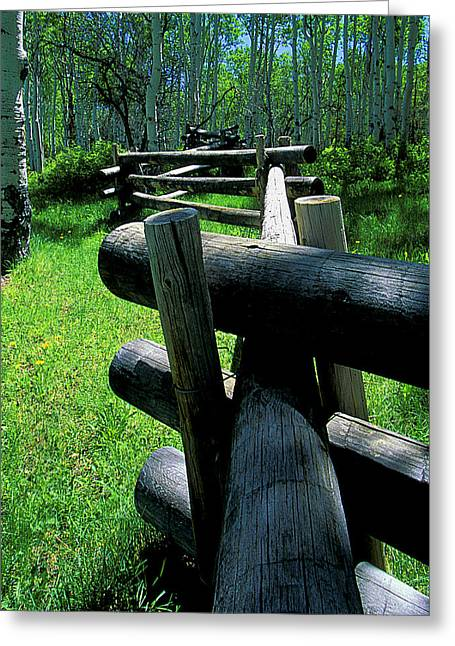 Crooked Fence Greeting Cards - A crooked fence Greeting Card by Mike  Bennett