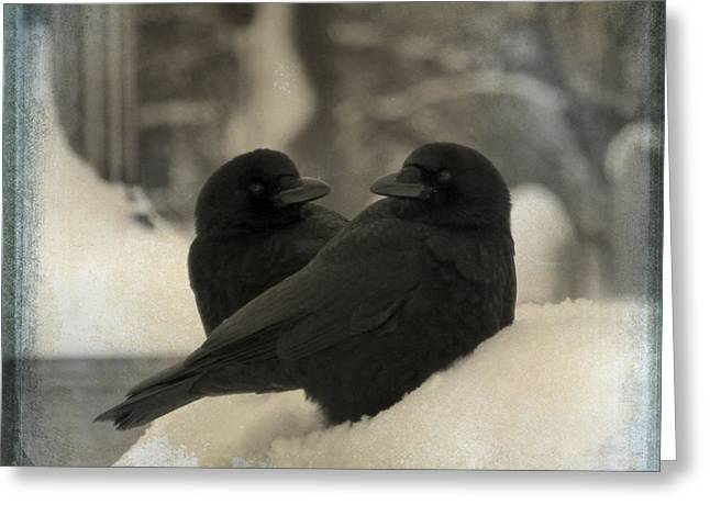 Two Crows Greeting Cards - A Crow Couple Greeting Card by Gothicolors Donna Snyder