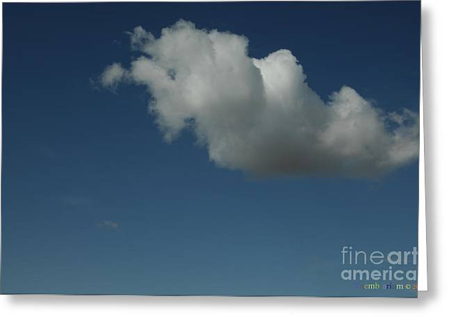Weather Report Greeting Cards - A Cumulus Cloud Greeting Card by Raembrarium