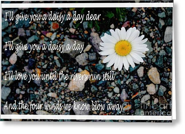 Give Me Flowers Greeting Cards - A Daisy a Day Greeting Card by Barbara Griffin