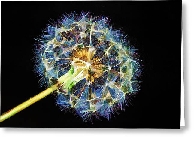 Colorful Dandelions Greeting Cards - A Dandy Vision Greeting Card by Bill Tiepelman