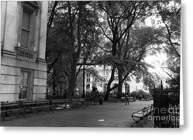 In-city Greeting Cards - A Day in City Hall Park mono Greeting Card by John Rizzuto