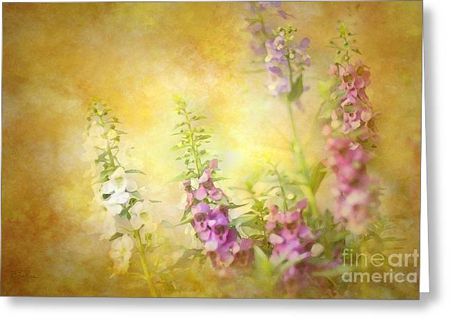 Floral Photographs Digital Greeting Cards - A Day In June Greeting Card by Betty LaRue
