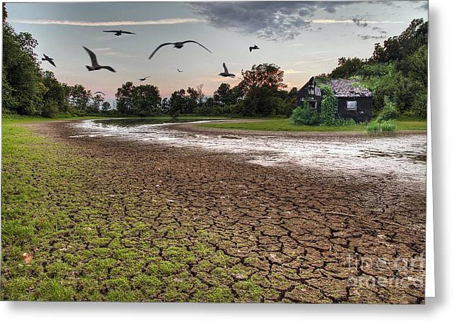 A Day Without Rain Greeting Card by Larry Braun