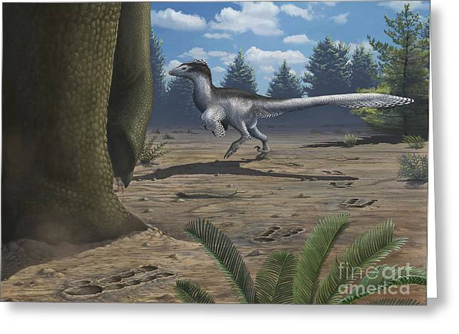 Dromaeosaurid Greeting Cards - A Deinonychosaur Leaves Tracks Greeting Card by Emily Willoughby