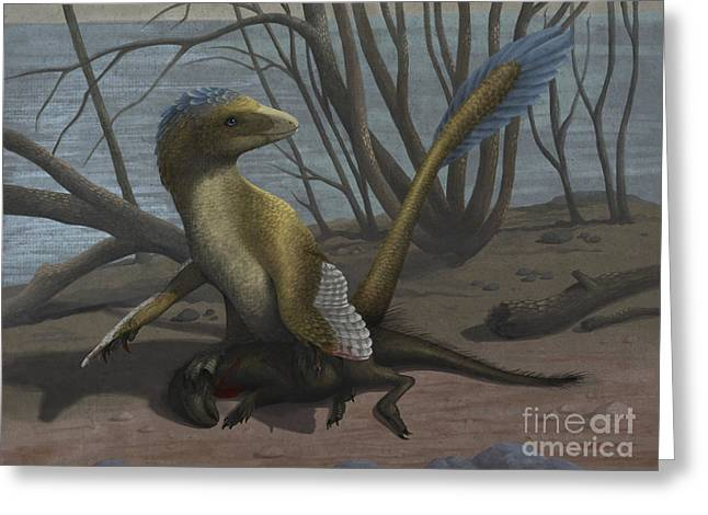 Existence Greeting Cards - A Deinonychus Protects Its Kill Greeting Card by Emily Willoughby