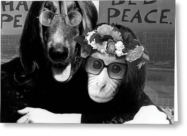 """""""photo Manipulation"""" Mixed Media Greeting Cards - A Different John and Yoko Greeting Card by Marian Voicu"""