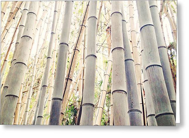 Angeles Forest Greeting Cards - A Different Kind of Forest Greeting Card by Aron Kearney Fine Art Photography