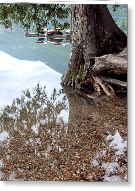 Docked Boats Greeting Cards - A Different Perspective Greeting Card by Heather Kenward