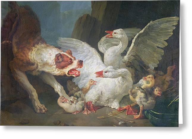 Gosling Greeting Cards - A Dog Attacking Geese, 1769 Oil On Canvas Greeting Card by Jean-Baptiste Huet