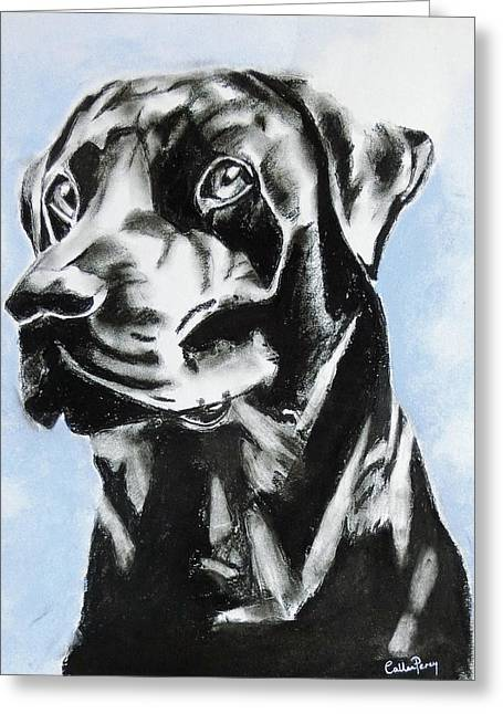 Labradors Pastels Greeting Cards - A Dog Called Henry Greeting Card by Callan Percy