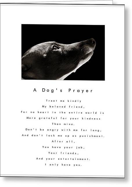 Rescued Greyhound Greeting Cards - A Dogs Prayer - White Greeting Card by Angela Rath