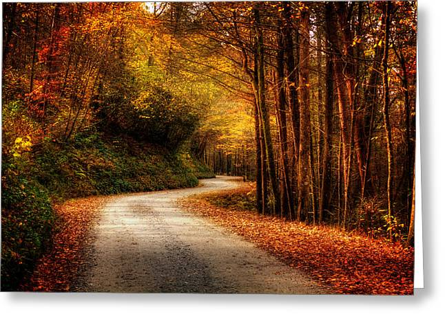 Mountain Road Greeting Cards - A Drive In The Mountains of Western North Carolina Greeting Card by Greg Mimbs