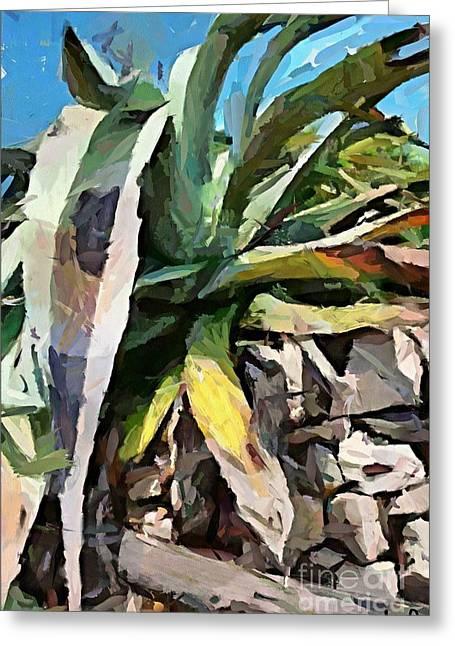 Agava Greeting Cards - A dry agava Greeting Card by Dragica  Micki Fortuna