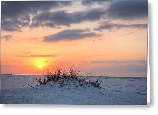 Realize Greeting Cards - A Dune is Born Greeting Card by JC Findley