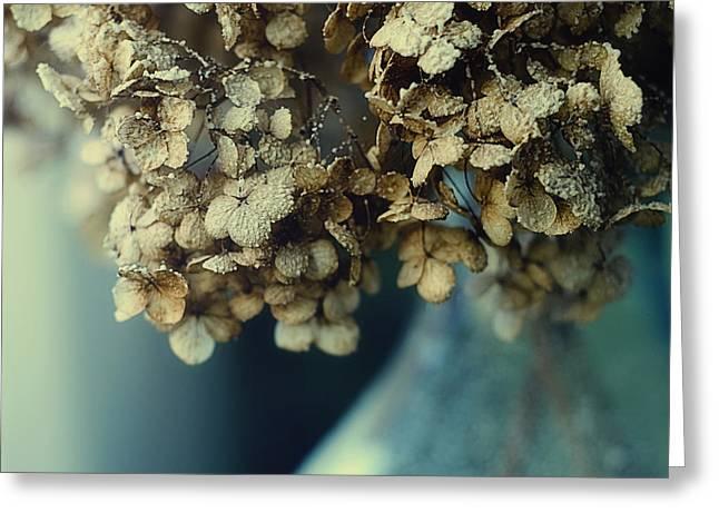 Dried Hydrangeas Greeting Cards - A Dustland Fairytale Greeting Card by Danny Van den Groenendael