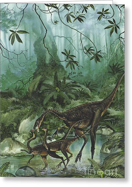 Stream Digital Art Greeting Cards - A Family Of Ornithomimus Dinosaurs Greeting Card by Jan Sovak