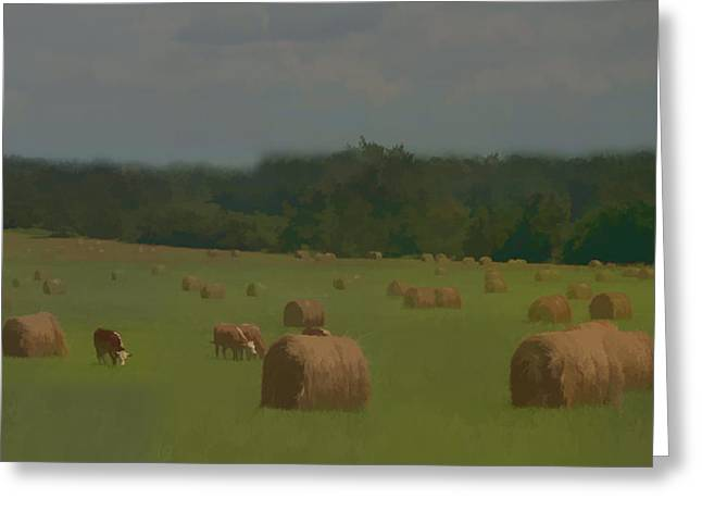 Hay Bales Greeting Cards - A Farm Life For Me Greeting Card by Lisa Van Alstyne