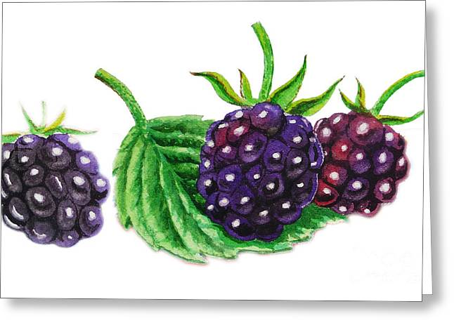Gift From Nature Greeting Cards - Just A Few Blackberries Greeting Card by Irina Sztukowski