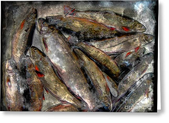 Brook Trout Image Greeting Cards - A Fine Catch of Trout - Steel Engraving Greeting Card by Barbara Griffin