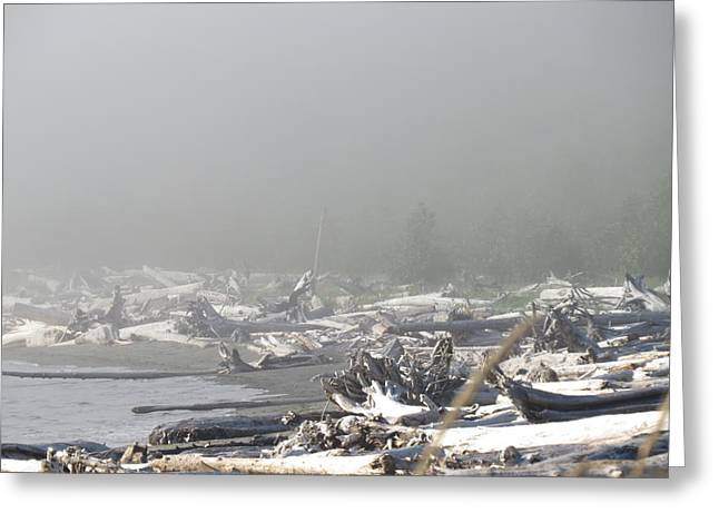 Port Renfrew Greeting Cards - A Foggy Day Greeting Card by Vinka Perzina