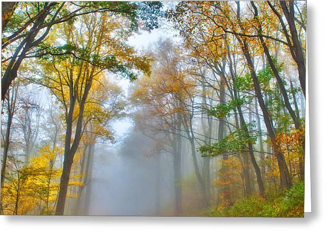 A Foggy Drive Into Autumn - Blue Ridge Parkway Greeting Card by Dan Carmichael