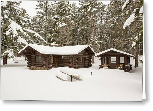 Pinus Resinosa Greeting Cards - A Forest Cabin Greeting Card by Tim Grams