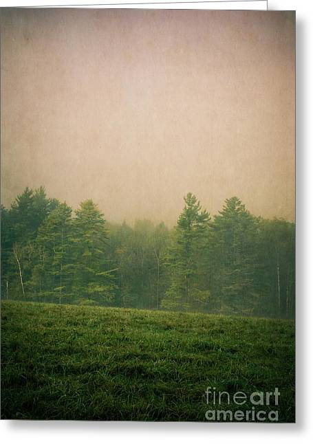 Foggy Greeting Cards - A Forest Greeting Card by Edward Fielding